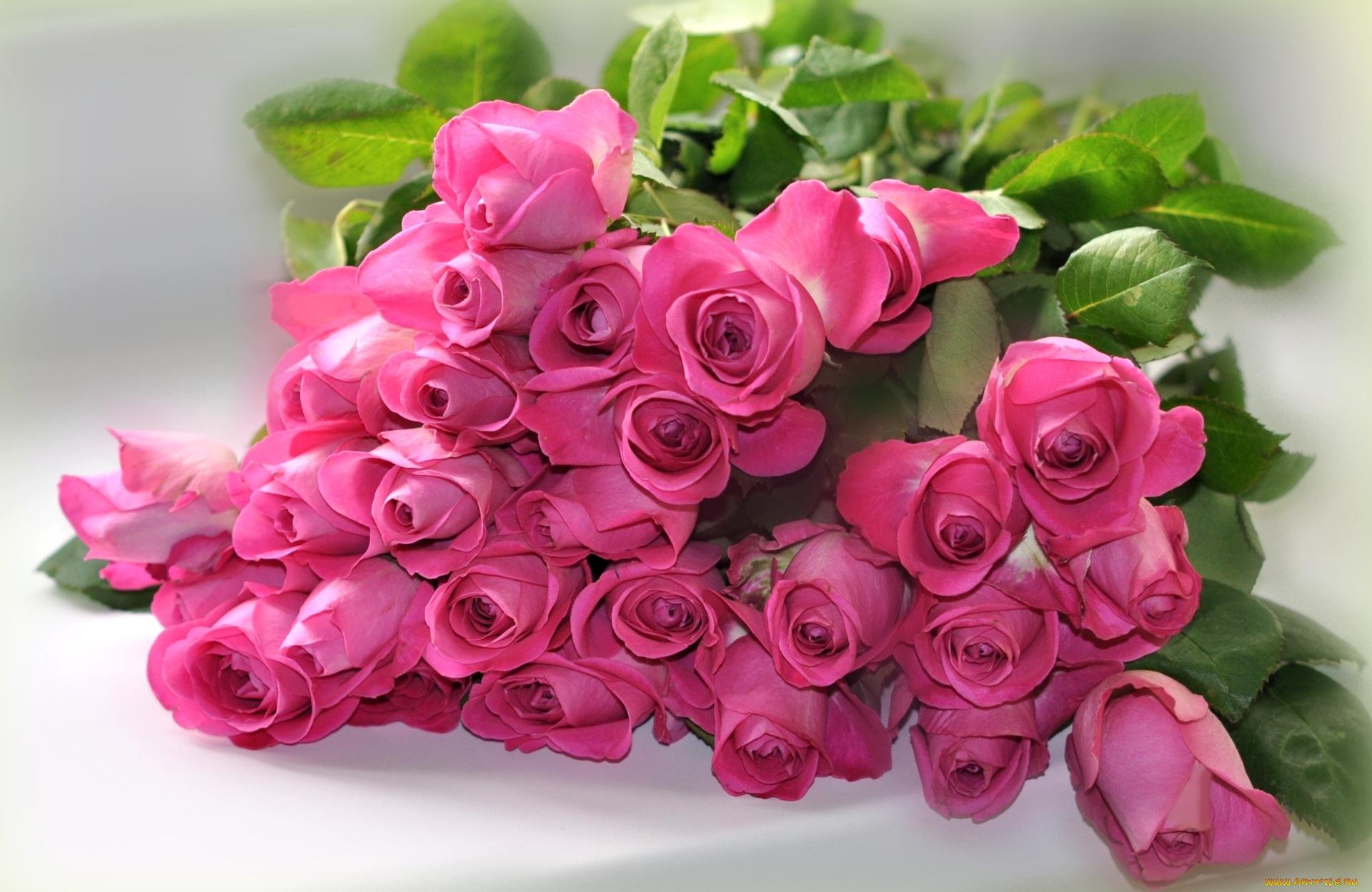 Картинки букет рз розовых с днем рождения 6