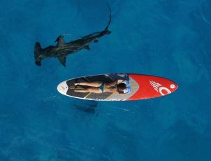 обоя юмор и приколы, акула, девушка, море
