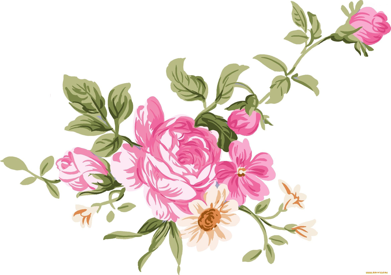 Цветы на открытку нарисованные, лет какая