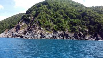 обоя природа, побережье, скала, деревья, вода