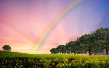 Картинка природа радуга