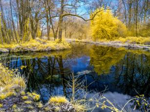обои на рабочий стол осень природа река озеро лес № 241661  скачать