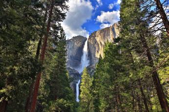 Картинка yosemite+falls природа водопады водопад лес горы скалы