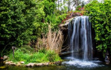 Картинка природа водопады водопад калифорния сша кусты