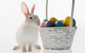Картинка животные кролики зайцы крашенки корзина пасхальные яйца кролик