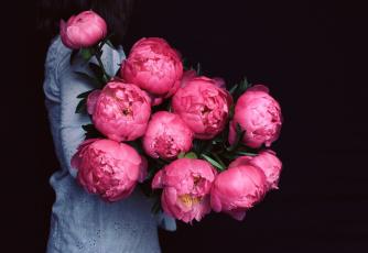 Картинка цветы пионы шары