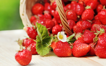 Картинка еда клубника +земляника спелая strawberry весна fresh berries корзинка красные ягоды
