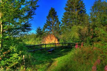 Картинка германия гессен природа парк дорожка скамейка деревья