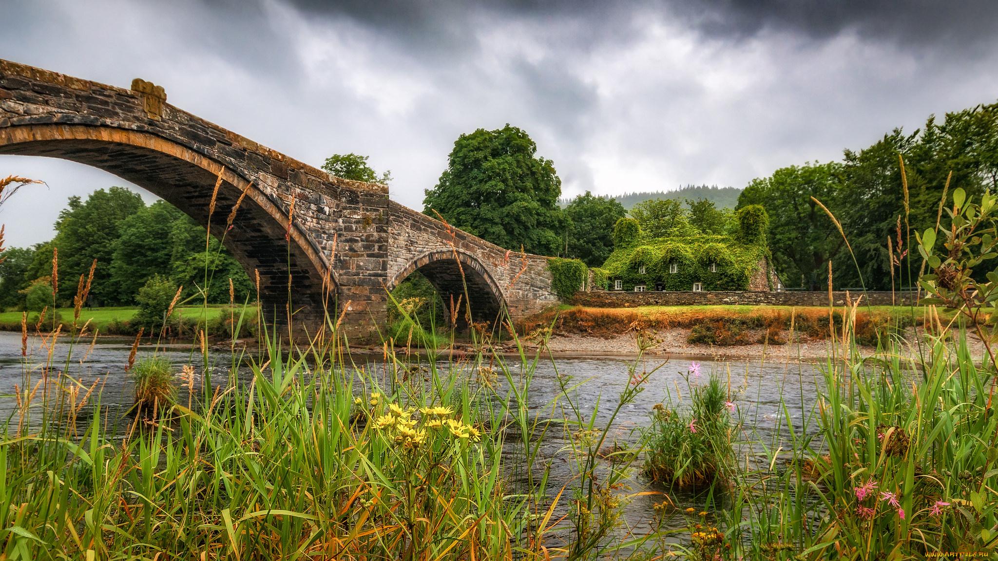 природа Уэльс мост деревья трава в хорошем качестве