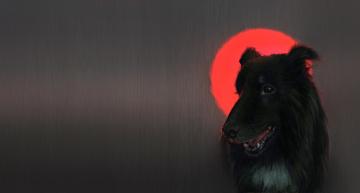 обоя рисованное, животные,  собаки, кровавая, луна, katherine, dinger, пёс, арт, собака