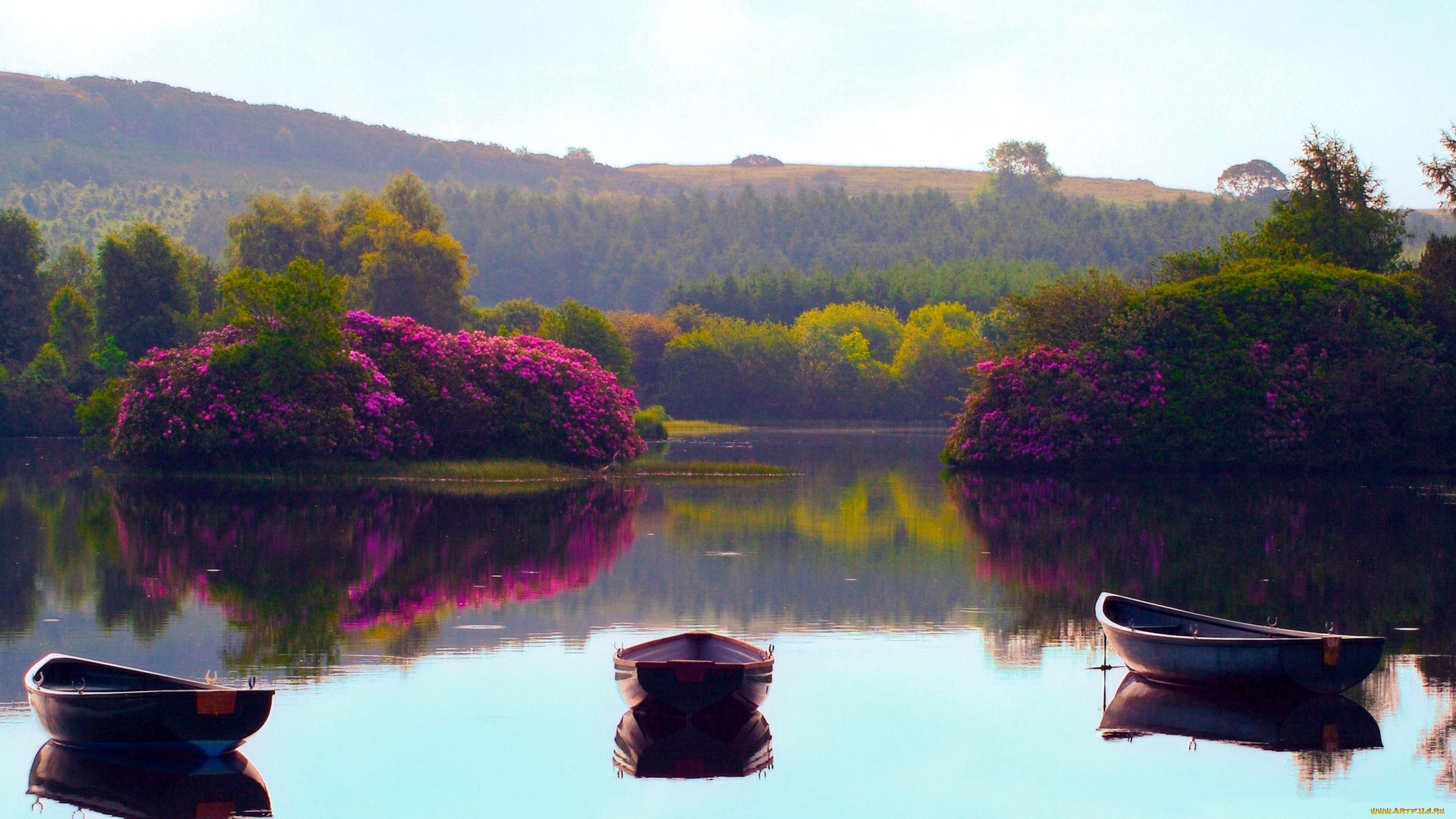 Лодка на берегу зеленого озера  № 2492981 бесплатно