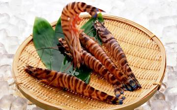 обоя еда, рыба,  морепродукты,  суши,  роллы, тигровые, креветки, tiger, prawns