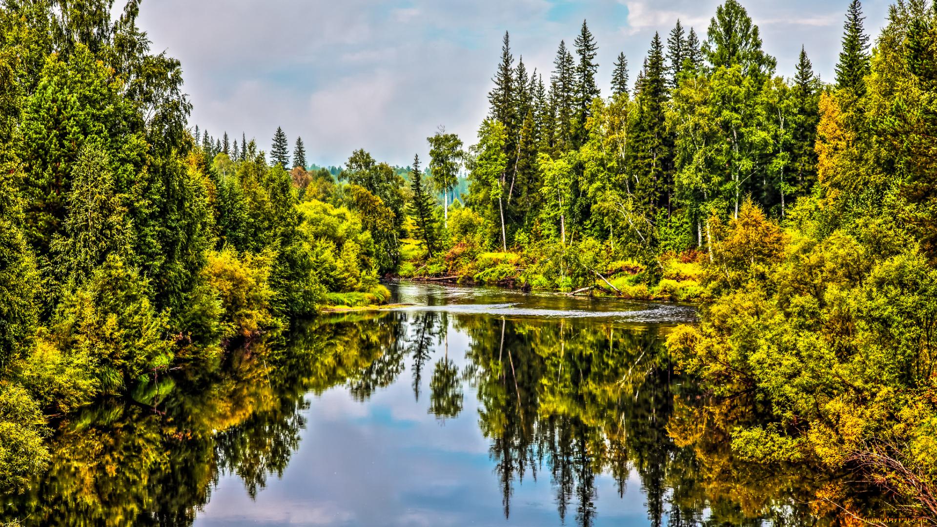 Фото природы лесов урала в высоком качестве