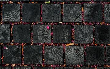 Картинка разное текстуры листочки текстура деревяшки лепестки цветки квадраты