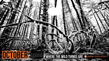 Картинка календари природа деревья лес черно-белый