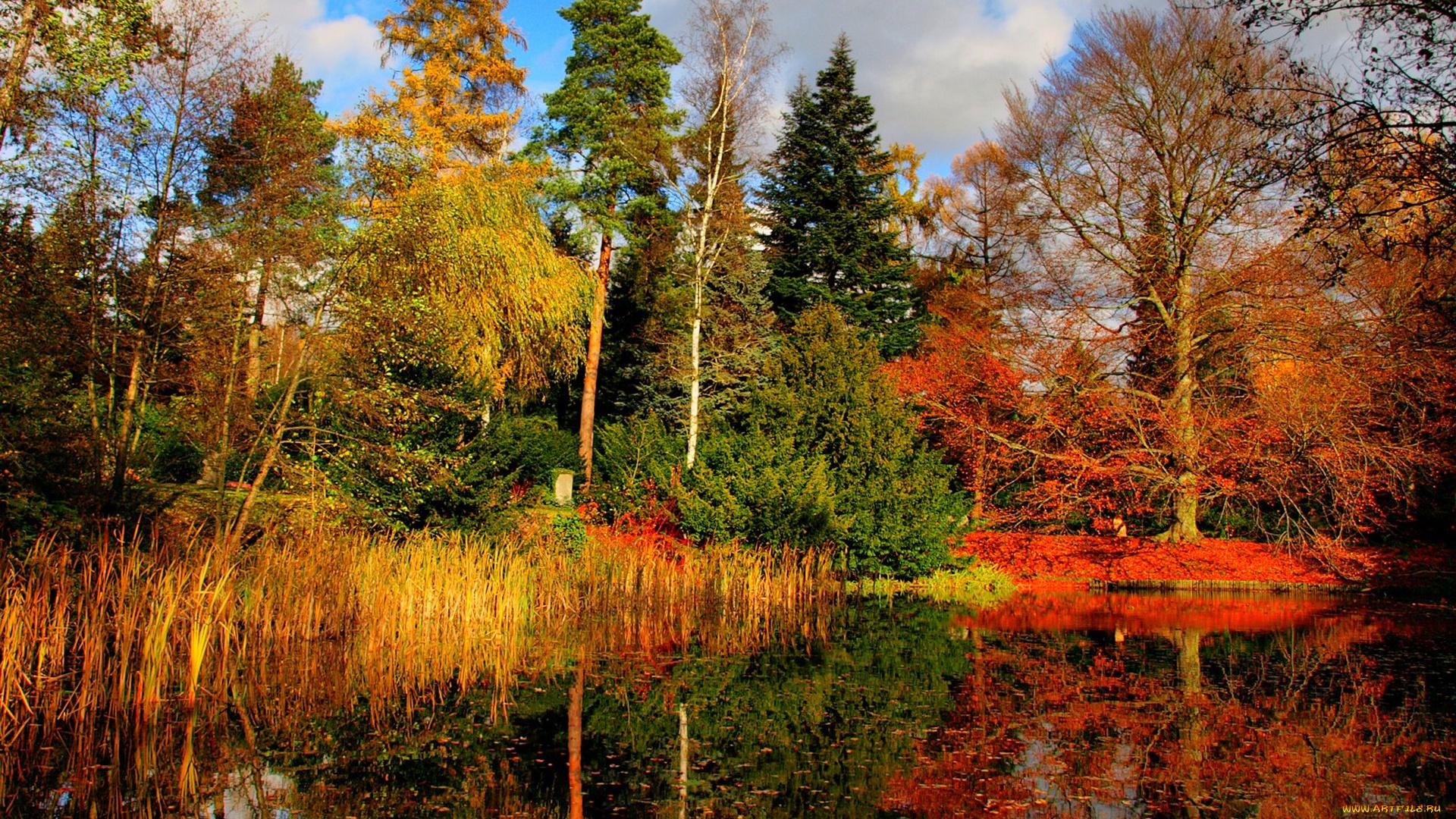 Картинки анимация природа осенью, картинки