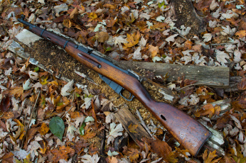 Картинка оружие винтовкиружьямушкетывинчестеры мосина винтовка магазинная m44
