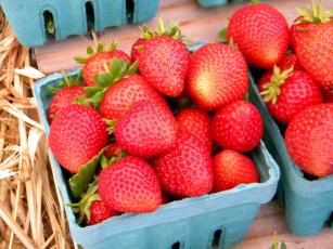 обоя еда, клубника,  земляника, много, ягоды, ящики