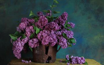 Картинка цветы сирень ветки ваза