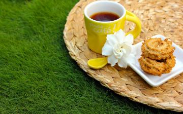 Картинка еда кофе +кофейные+зёрна пирожное гардения