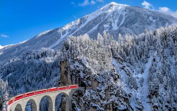 обоя техника, поезда, швейцария, горы, ели, виадук, ландвассер, зима, альпы, снег, кантон, граубюнден, поезд, железная, дорога