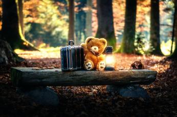 обоя разное, игрушки, чемодан, мишка, лампа, игрушка
