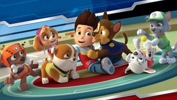 обоя paw patrol   «щенячий патруль», мультфильмы, paw patrol, персонажи
