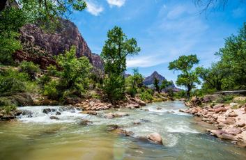 Картинка природа реки озера горы лес река поток