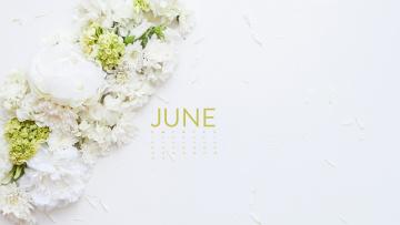 обоя календари, цветы, белый