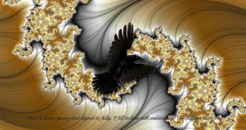 обоя 3д графика, фракталы , fractal, цвета, фон, узор