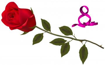 обоя праздничные, международный женский день - 8 марта, цветы, роза, фон