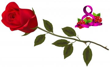 обоя праздничные, международный женский день - 8 марта, фон, цветы, роза