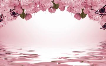 обоя разное, компьютерный дизайн, сакура, цветы, искры, бабочки, фон
