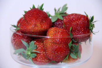 обоя еда, клубника,  земляника, макро, лето, июнь, ягоды, хабаровск, дача, сад, нфд