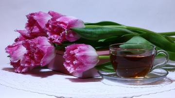 обоя еда, напитки,  Чай, весна, тюльпаны, цветы, чай, посуда
