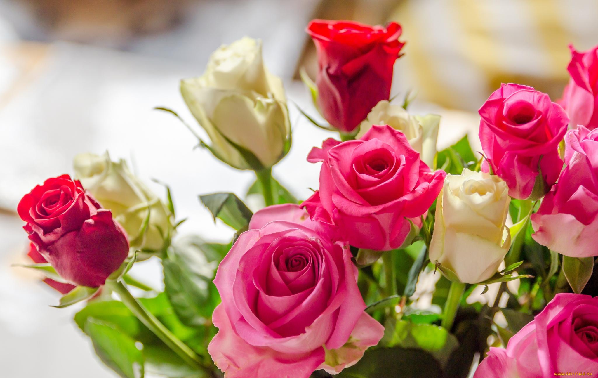 Доброе утро букет роз открытка