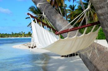 Картинка природа тропики песок солнышко пальмы пляж море