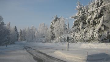 Картинка природа дороги лес снег