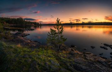 обоя природа, восходы, закаты, two, trees, ringerike, norway, норвегия