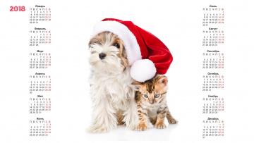 обоя календари, животные, шапка, собака