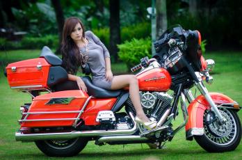 Картинка мотоциклы мото девушкой harley-davidson азиатка