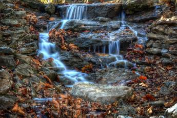 Картинка природа реки озера камни ручей листва