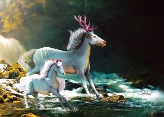 обоя рисованное, животные,  сказочные,  мифические, жеребенок, лошадь, природа, by, i-mi, фэнтази