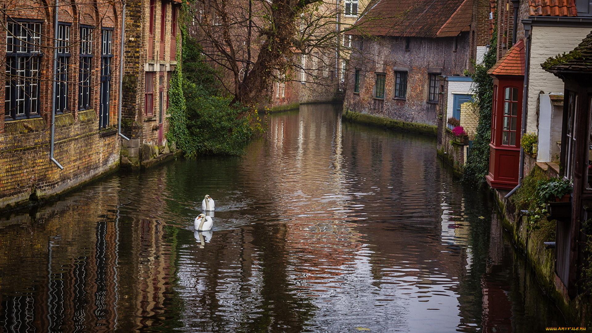страны архитектура река Бельгия Брюгге  № 1730809 без смс