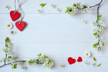 обоя праздничные, день святого валентина,  сердечки,  любовь, праздник, сердечки, ромашки, цветы, ветки