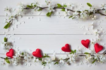 обоя праздничные, день святого валентина,  сердечки,  любовь, сердечки, день, святого, валентина, праздник, цветы