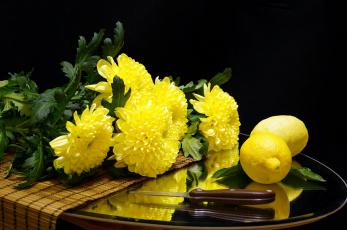 обоя еда, цитрусы, цветы, хризантемы, нож, цитрус, лимон