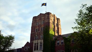обоя города, - здания,  дома, здание, плющ, флаг