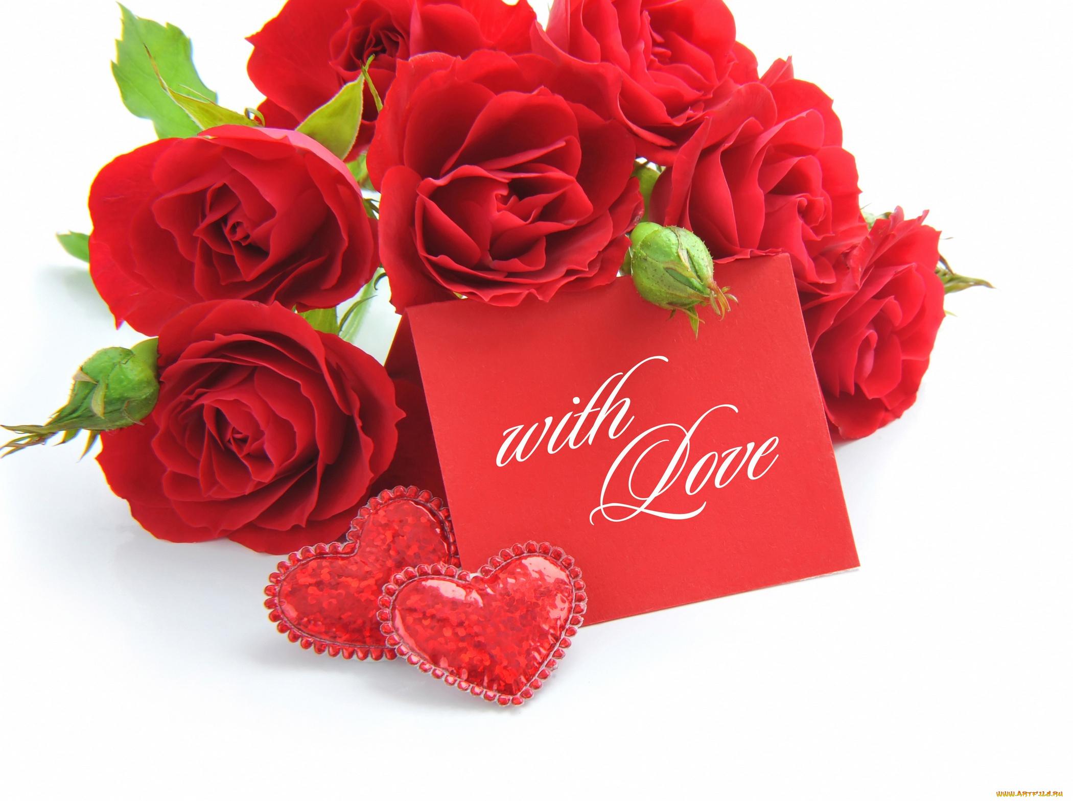 Для братика, мини открытки розы