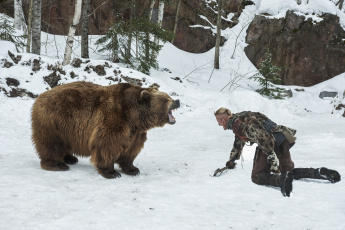 обоя кино фильмы, vikings , 2013,  сериал, alexander, ludwig, бьёрн, медведь, викинги, vikings, поединок